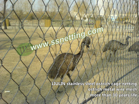 ostrich cage fence netting.jpg