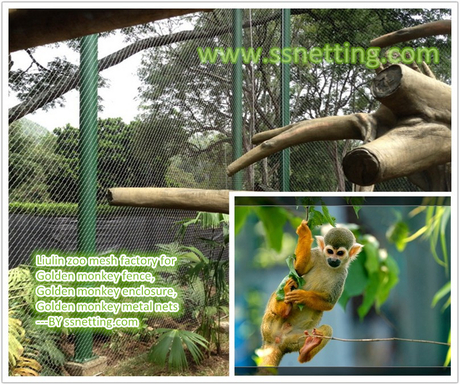 Golden monkey fence, Golden monkey enclosure, Golden monkey metal nets.jpg