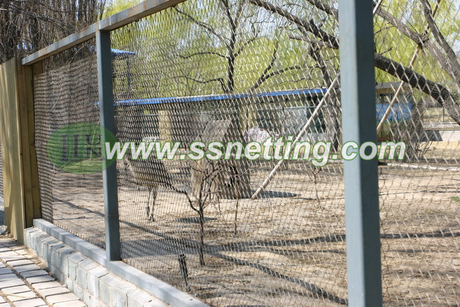 Ostrich fence in zoo.jpg