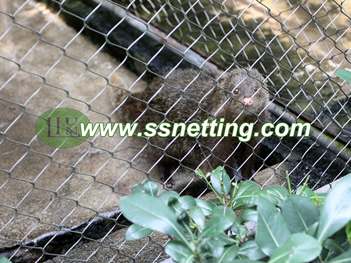 Animal Enclosures Netting