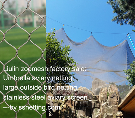 Umbrella aviary netting, large outside bird netting, stainless steel aviary screen.jpg
