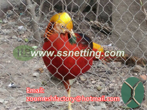 stainless steel Golden Pheasant fence net, turkey cage fence mesh, guinea fowl fence mesh, steel wire rope netting