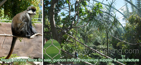 Nagao Monkey fence.jpg