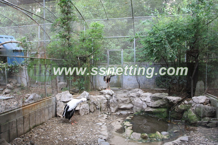 In the zoo or the birds parks, the design and construction of the Red Crowned Crane cages fence have some tips