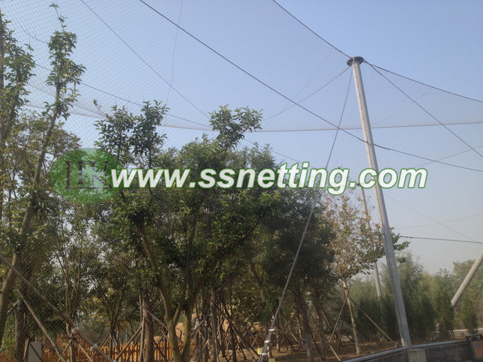 Aviary Wire Netting
