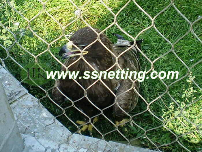 Stainless steel zoomesh are very suitable for bird vultures cage netting