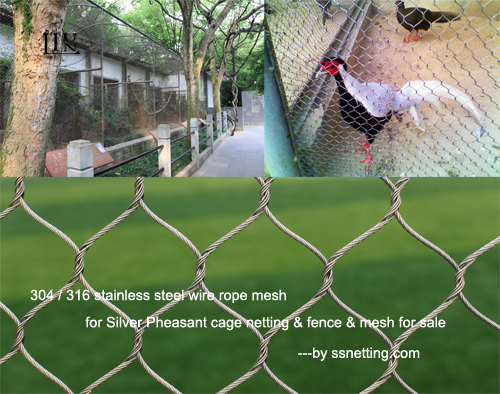 316 stainless steel wire rope mesh for Silver Pheasant cage netting & fence & mesh for sale.jpg