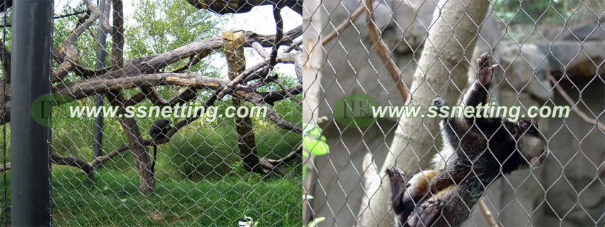 small cat cage fence, outdoor cage fence for small cats.jpg