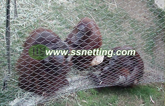 100% hand woven wire rope mesh suppliers