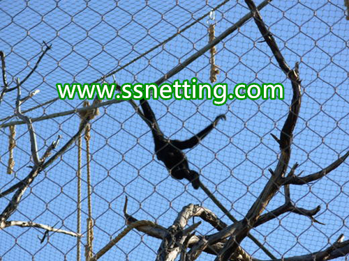 gorillas cage fence, gorillas fence enclosure, gorillas enclosure mesh-liulin manufacturer custom