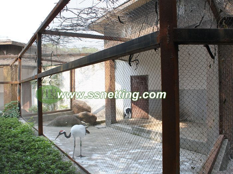 bird cage netting, bird aviary mesh.jpg