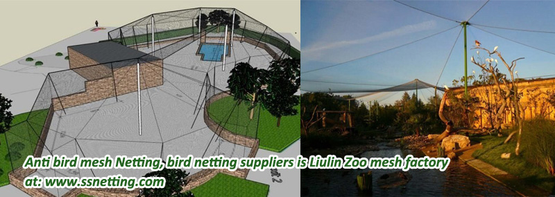 Anti bird mesh Netting.jpg