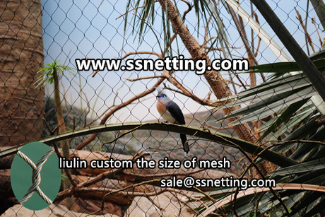 zoo bird aviary netting mesh.jpg