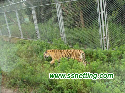 Safe Tiger Protection Nets