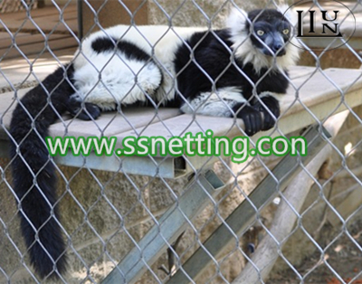 monkey barrier protective netting, zoo enclosures for monkey exhibit design.jpg