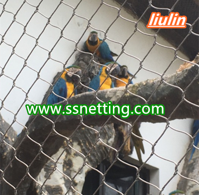 Parrot cage netting suppliers design- zoo parrot fence mesh