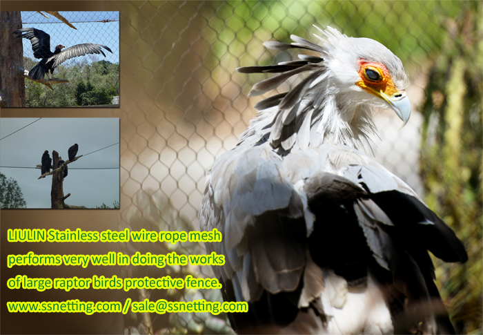 LIULIN Stainless steel wire rope mesh performs very well in doing the works of large raptor birds protective fence