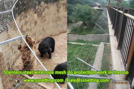 Stainless steel wire rope mesh do protection work in the zoo.jpg