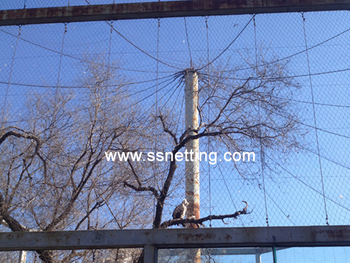 animal and plant park netting cases