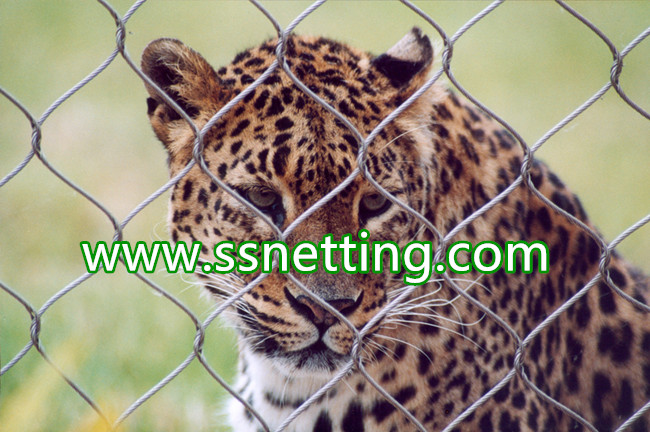 Stainless Steel Rope Netting is used for Zoo Animal Enclosure