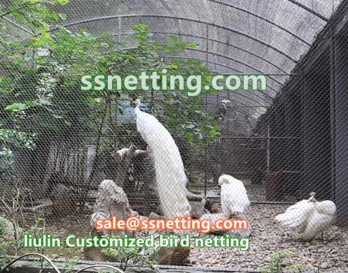 bird netting, bird enclosure netting, bird fence enclosure