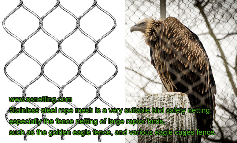 Fence netting of large raptor birds, Golden eagle fence