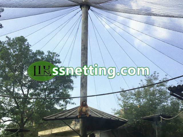 stainless steel cable mesh very suitable used in zoos, parks, garden for kinds of bird aviary netting, animal enclosure, animal fence, decorative, protective, and so on.