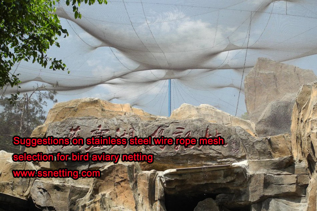 Suggestions on stainless steel wire rope mesh selection for bird aviary netting