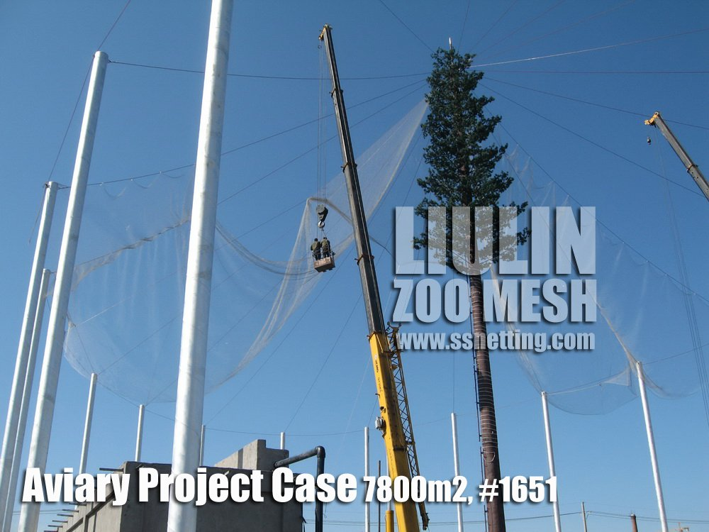 Aviary netting project Installation case